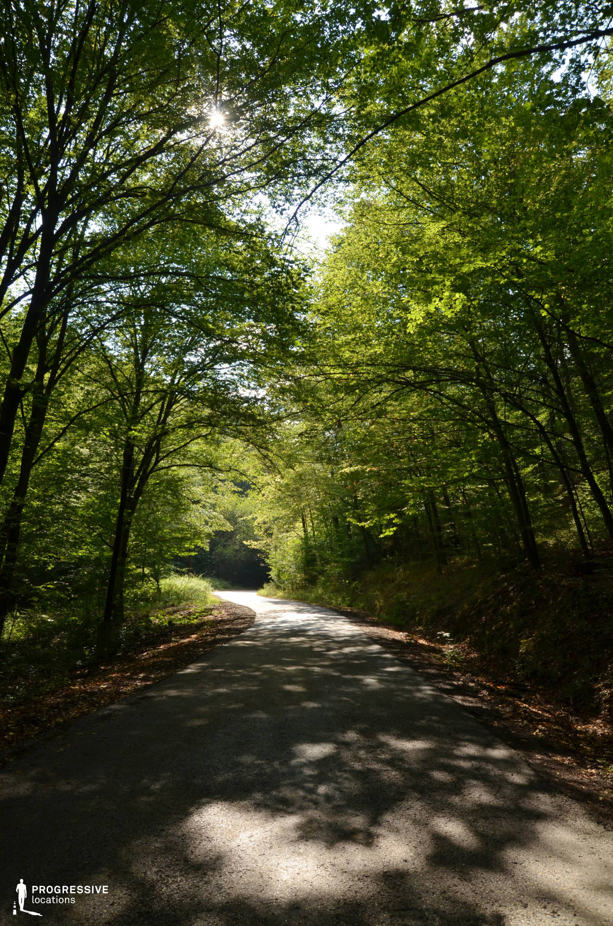Locations in Hungary: Forest Road, Domor Kapu
