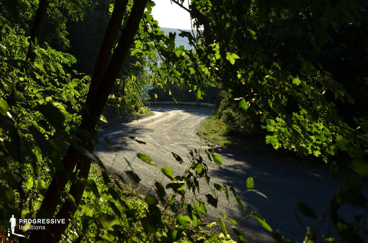 Locations in Hungary: Hillside Forest Road, Visegrad