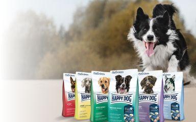 Augustové akcie pre psov