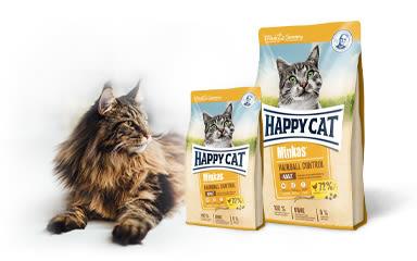 Akce Happy Cat na únor!