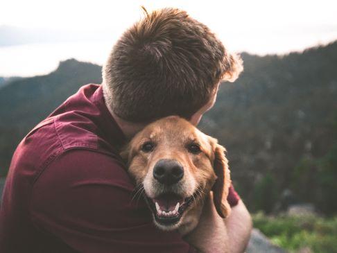 Hund-eric-ward-610868-unsplash.jpg