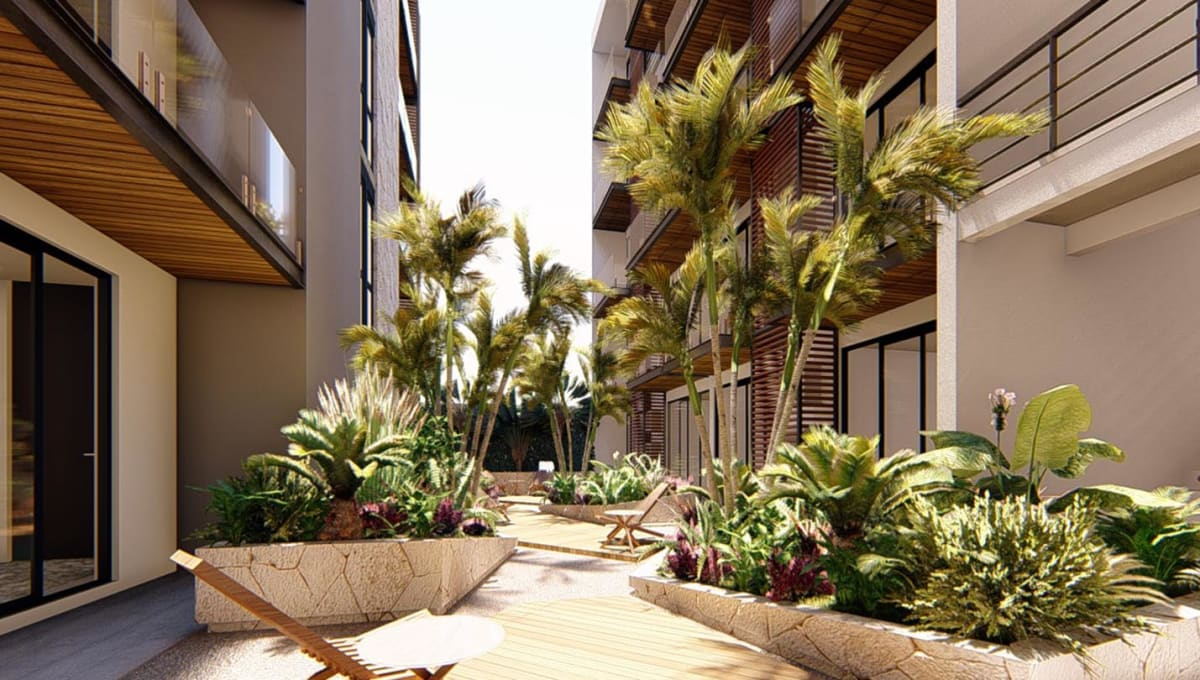 meliora-patio-playa-del-carmen.jpg
