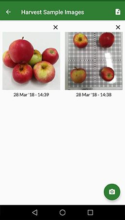 Mobile App - Harvest Images