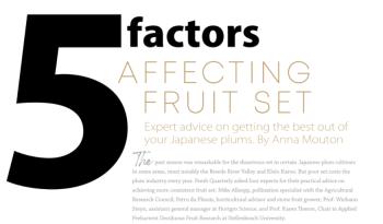 5 Factors Affecting Fruit Set