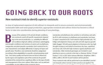 SAFJ article 'Going Back to our Roots'
