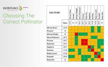 Hortgro Science Fresh Notes: Choosing The Correct Pollinator