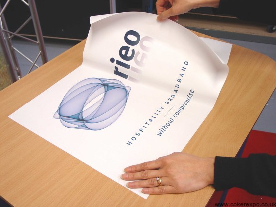 Removable self adhesive graphic