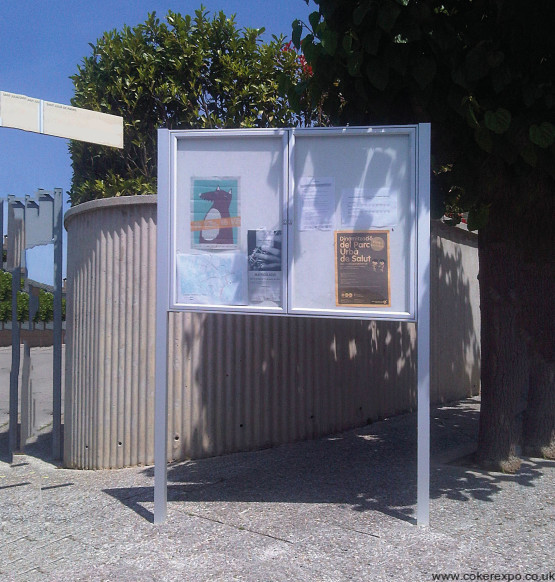 Locking notice board with posts