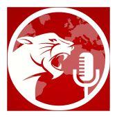 Red Cat Studios