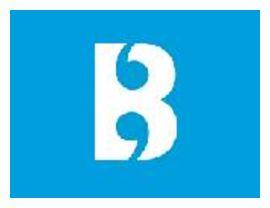 Brightlines Translation Ltd logo