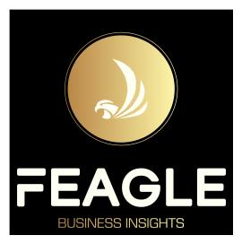 FEAGLE BUSINESS INSIGHTS logo