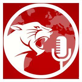 RED CAT STUDIOS LTD. (Former art4art Communication Ltd. /art4art: (UK) Ltd. / Voice Talents International) logo