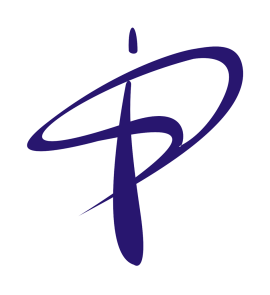 Parikh Info Solutions Pvt. Ltd. Formerly: Parikh Infosys P. Limited logo