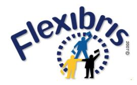 flexibris sp. z o.o. logo