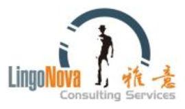 LingoNova Consulting Services logo