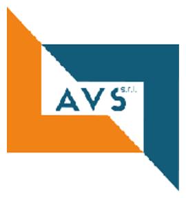 AVS s.r.l. logo