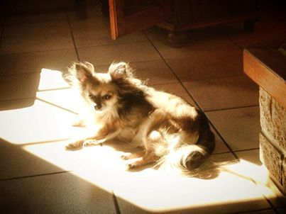 kimy au soleil