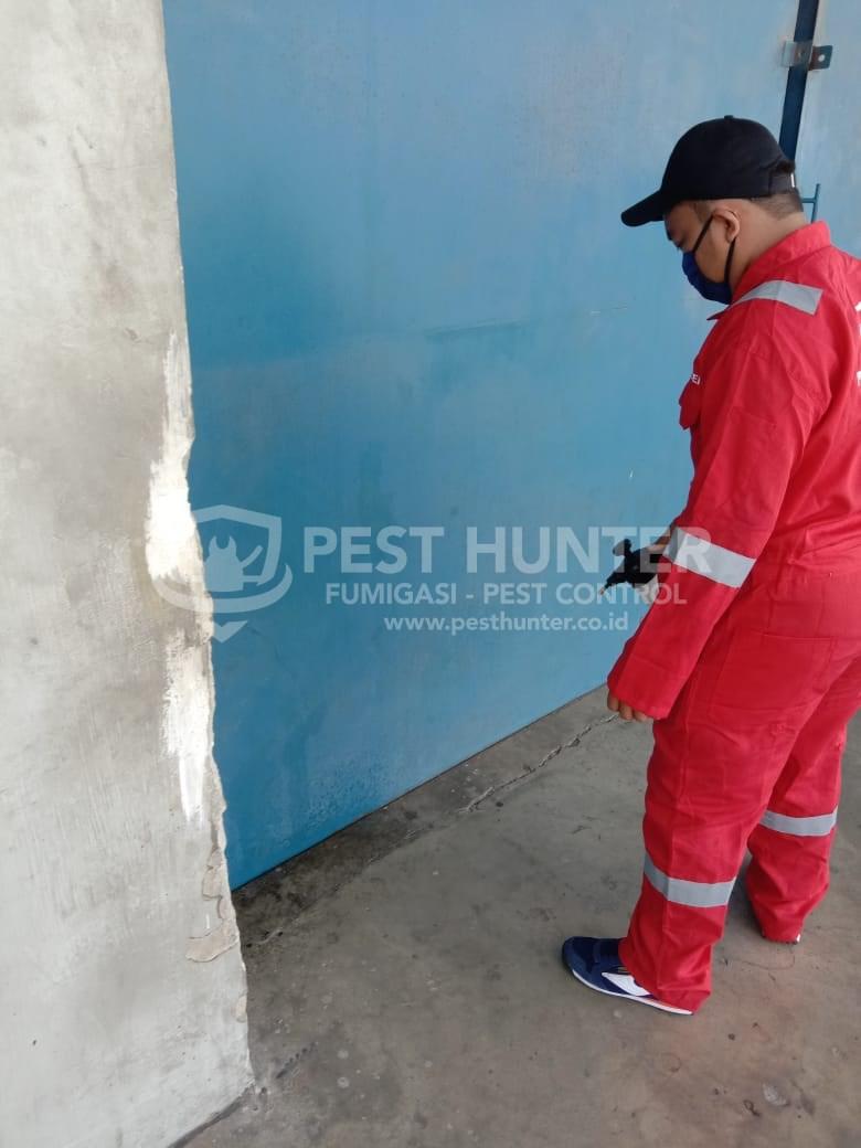 Treatment Disinfektan PT PLPESTINDO