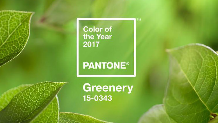 cor do ano de 2017 Greenery