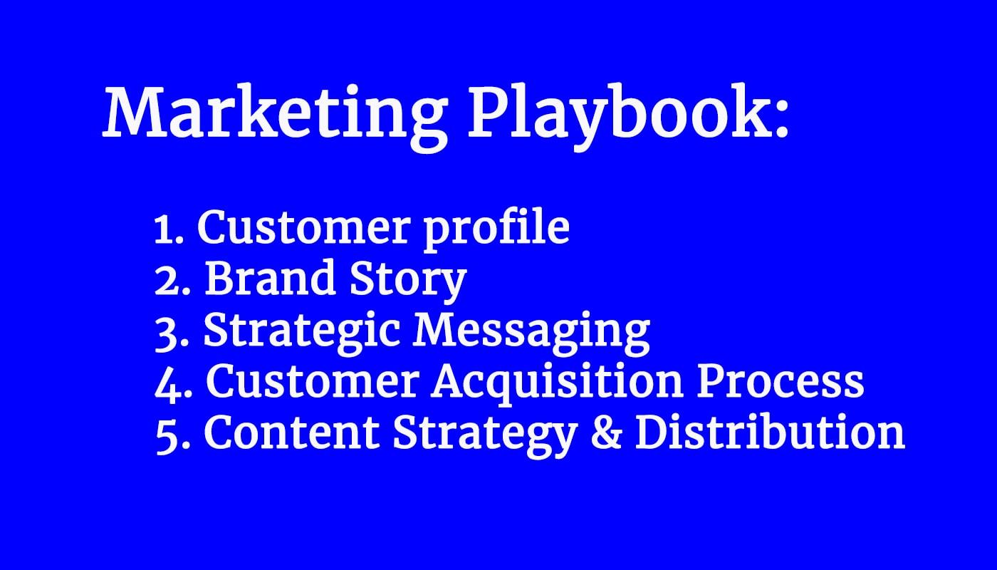 Marketing Strategy Playbook (20 min video)