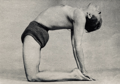 blog  pose of the week ustrasana