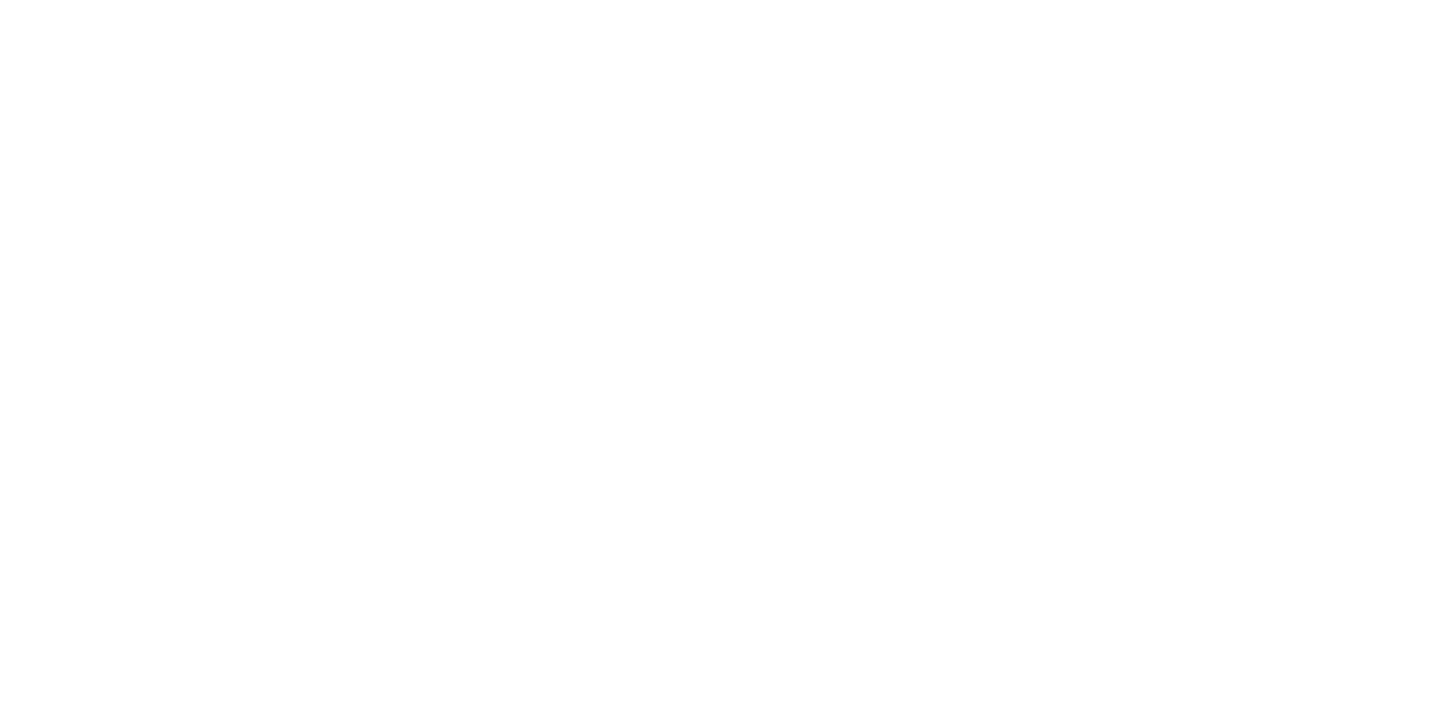 Punt Racing