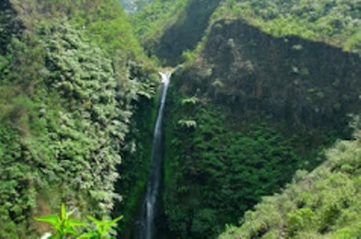 air-terjun-coban-wilis1