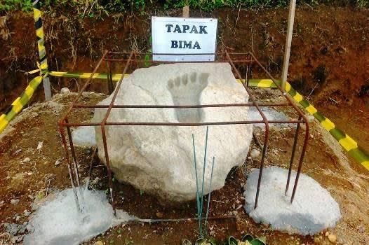 tapek-bimm
