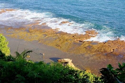 keindahan-pantai-babakan-tuguragung