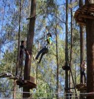 Bandung Tree Top Adventure Park Cikole Lembang