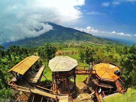 Omeah Bamboo Merapi