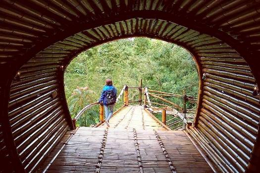 Terowongan Oemah Bamboo Merapi