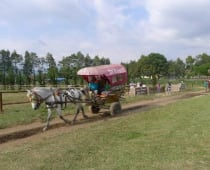 De'Ranch Lembang, Bandung