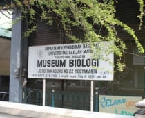 Museum Biologi Jogja