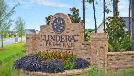 Lindera Preserve At Cane Bay Plantation Arbor Collection