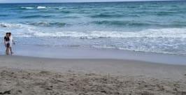 3901 S Ocean Dr #3o