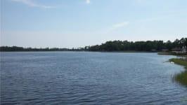 14158 Lake Price Drive
