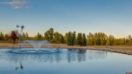 370129 80 St W, Rural Foothills M.D. - Your Private Fishing Pond