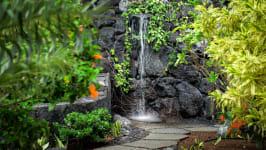 Keauhou, Kahaluu-Keauhou, Kona 'Akau, HI, USA, Kailua Kona, HI, United States - Image 12