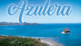 Azulera Brasilito