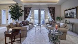 Sonoran Desert Luxury Estate  - Living Room