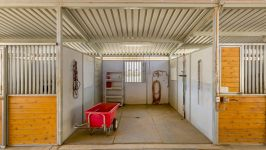 26626 Paradise Valley Rd - Stables