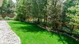 Steamboat - Mature Landscaping