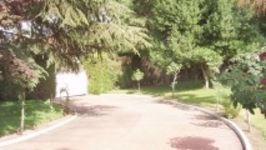 Camino De La Fuente# 48