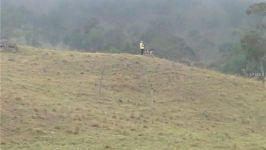 La Cabaã±A Reserva Forestal Chicaque