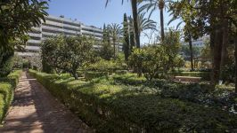Marbella, Malaga, ES - Image 43