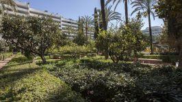 Marbella, Malaga, ES - Image 44