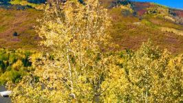 925 Saddle View  Way, Park City, UT, US - Image 32