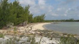 Cage Point, Marsh Harbour, Abaco, BS - Image 10