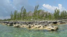 Cage Point, Marsh Harbour, Abaco, BS - Image 11
